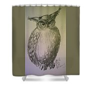 Great Owl Shower Curtain