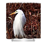 Great Plumage  Shower Curtain