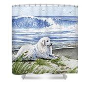 Great Pyrenees At The Beach Shower Curtain