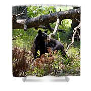 Great Smoky Mountain Bear Shower Curtain