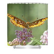 Great Spangled Fritillary Butterfly Shower Curtain
