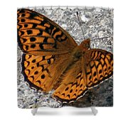 Great Spangled Fritterlary Shower Curtain