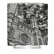 Great Synagogue Shower Curtain