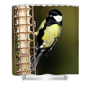 Great Tit On Feeder  Shower Curtain