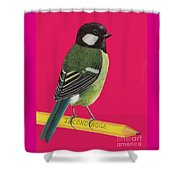 Great Tit Perched On Pencil Shower Curtain