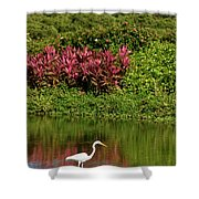 Great White Egret Fishing In A Pond With Tropical Plants And Sie Shower Curtain