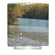 Great White Egret Fishing  Shower Curtain