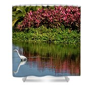 Great White Egret Hunting In A Pond In Mexico With Iguana And Re Shower Curtain