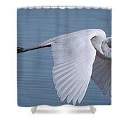 Great White Flight Shower Curtain