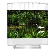 Great White Heron Green Cay Wetlands Shower Curtain