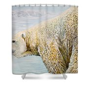 Great White Hunter Shower Curtain