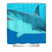 Great White Shark Close-up Shower Curtain