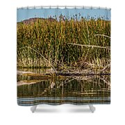 Greatblueheron-nonest-h Shower Curtain