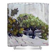 Greek Grapes Shower Curtain