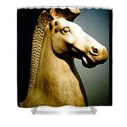 Greek Horse Statue Shower Curtain