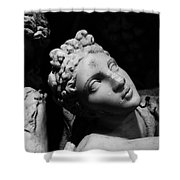 Greek Maiden Shower Curtain
