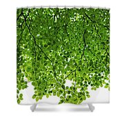 Green #001 Shower Curtain