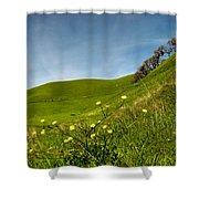 Green 4 Flowers Shower Curtain