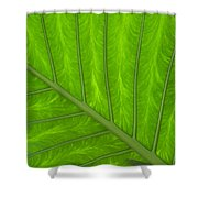 Green Abstract No. 4 Shower Curtain