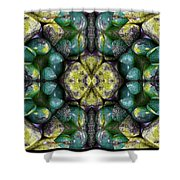 Green And Blue Stones 3 Shower Curtain