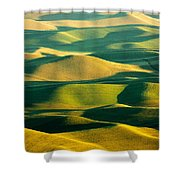 Green And Gold Acres Shower Curtain