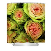 Green And Pink Rose Bouquet Shower Curtain