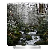 Green And White Shower Curtain