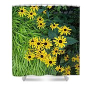 Green And Yellow Burst Shower Curtain