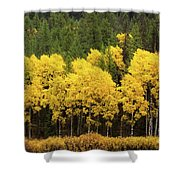 Green And Yellow Shower Curtain