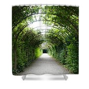 Green Arbor Of Mirabell Garden Shower Curtain