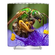 Green Bee Macro Shower Curtain