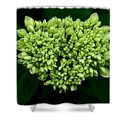 Green Bloom Shower Curtain