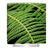 Green Bracken Shower Curtain