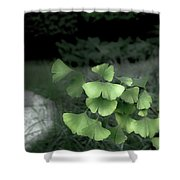 Green Butterflies  Shower Curtain