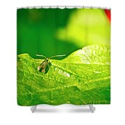 Green Creature On A Broad Leaf. Shower Curtain