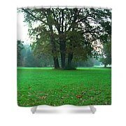 Green Dawn In Autumn Shower Curtain