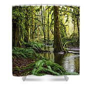 Green Everywhere Shower Curtain