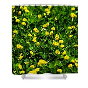 Green Field Of Yellow Flowers 4 Shower Curtain