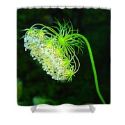 Green Flower Shower Curtain