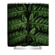 Green Foilage Of Indonesia Shower Curtain