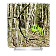 Green Foliage Forest Shower Curtain