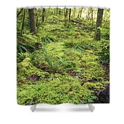Green Foliage On The Forest Floor Shower Curtain