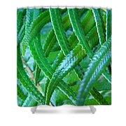 Green Forest Fern Fronds Art Prints Baslee Troutman Shower Curtain