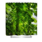 Green Forest Trees 1 Shower Curtain