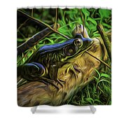 Green Frog On A Brown Log Shower Curtain