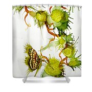 Green Fruit And Butterfly Shower Curtain