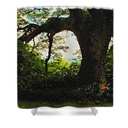 Green Giant Shower Curtain