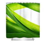 Green Grass Background Shower Curtain