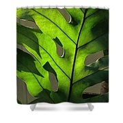 Green Green Green Shower Curtain