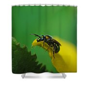 Green Head Shower Curtain